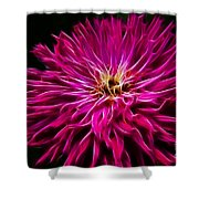 Pink Zinnia Digital Wave Shower Curtain