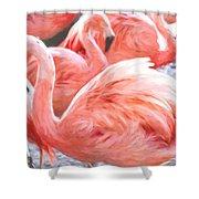 Pinked Flamingos Shower Curtain