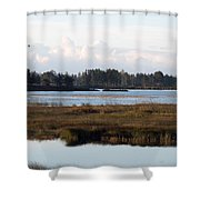Pinks And Blues Shower Curtain