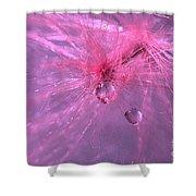 Pinky Dream Shower Curtain