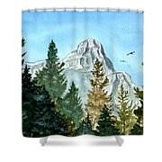 Pinnacle Shower Curtain
