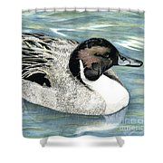 Pintailed Elegance Shower Curtain