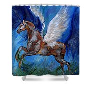 Pinto Pegasus With Blue Mane Shower Curtain