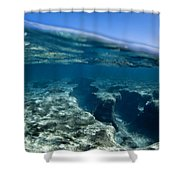 Pipe Reef. Shower Curtain