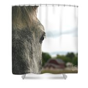 Piper's Thoughts Shower Curtain