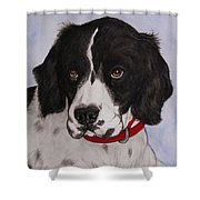 Pippy The Springer Spaniel Shower Curtain