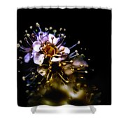Anthers Shower Curtain
