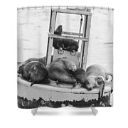 Pit Stop Black And White Shower Curtain