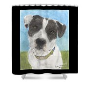 Pitbull Dog Portrait Canine Animal Cathy Peek Shower Curtain