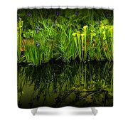 Pitcher Plant Paradise Shower Curtain by Mike Nellums