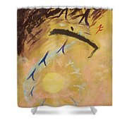Place Of Light Shower Curtain