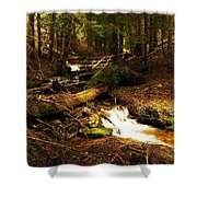 Placer Creek Shower Curtain