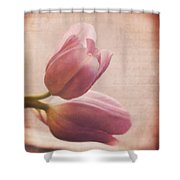 Places In Our Hearts - Vintage Art By Jordan Blackstone Shower Curtain