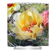 Plains Prickly Pear Flower Shower Curtain