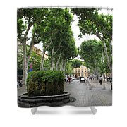 Plane Alley - Aix En Provence Shower Curtain