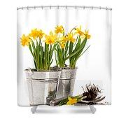 Planting Bulbs Shower Curtain by Amanda Elwell