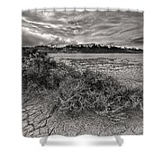 Plants On The Alvord Desert Shower Curtain
