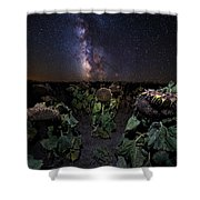 Plants Vs Milky Way Shower Curtain