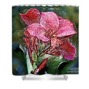 Plastic Wrapped Pink Flower By Diana Sainz Shower Curtain