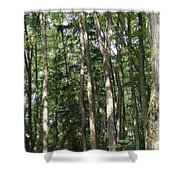 Plate River No 1 Shower Curtain