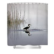 Platinum Heron Shower Curtain by Skip Willits