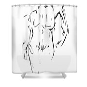 Play Catch Shower Curtain