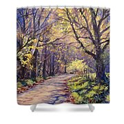 Play Of Light Shower Curtain