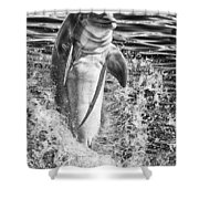 Playful Black And White Shower Curtain