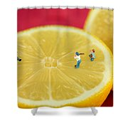 Playing Baseball On Lemon Shower Curtain