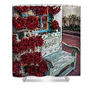 Plaza Gifts Bench Shower Curtain