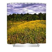 Pleasant Meadow Foreboding Sky Shower Curtain
