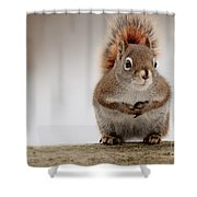 Please May I Have Some More? Shower Curtain