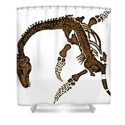 Pleisiosaurus, Mesozic Marine Reptile Shower Curtain
