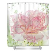 Plenty Of Joy And Sun. Natural Watercolor. Touch Of Japanese Style Shower Curtain