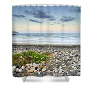 Plomo Beach Shower Curtain
