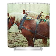 Plow Horses Shower Curtain