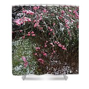 Plum Blossom In The Snow Shower Curtain