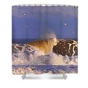 Plum Island Waves Shower Curtain