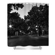 Plum Street To Franklin Square Shower Curtain