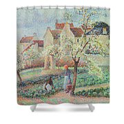 Plum Trees In Flower Shower Curtain