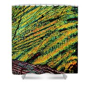 Feathers Of Time Shower Curtain