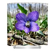 Plumb Wildflowers Shower Curtain