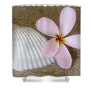 Plumeria Flower And Sea Shell Shower Curtain