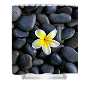 Plumeria Pebbles Shower Curtain