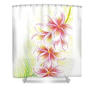 Plumerias  Shower Curtain