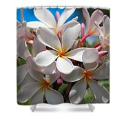 Plumerias Under A Blue Sky Shower Curtain