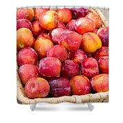 Plums In A Basket Shower Curtain