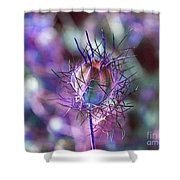 Pod Play Shower Curtain