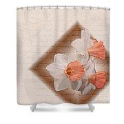 Poem Of Peach Daffodils Shower Curtain