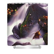 Poetry In Motion - 290 Shower Curtain by Paul W Faust -  Impressions of Light